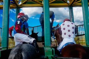 Horses and jockeys in the starting gate.