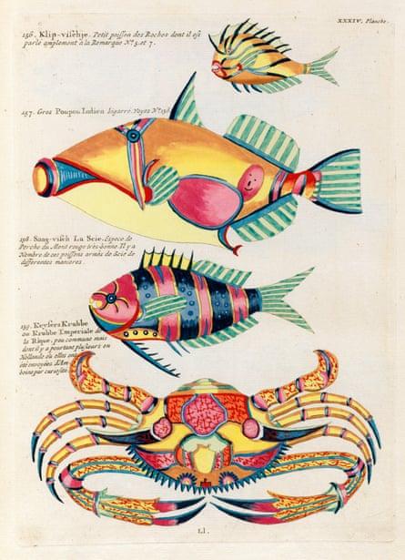 Louis Renard's Poissons, ecrevisses et crabs