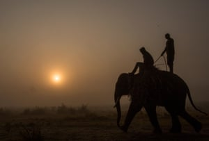Mahout ride an elephant in Nepal at sunrise