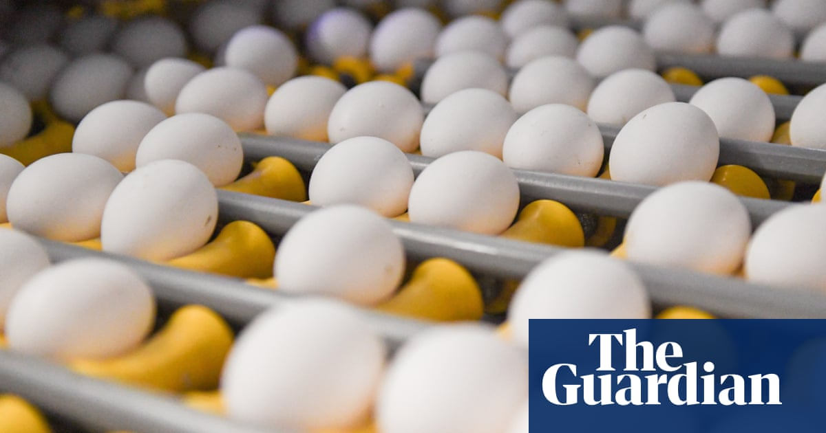 Egglands Best Recall 2019 Eggs recalled in four states due to 'exotic' salmonella strain