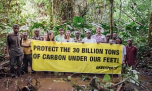 Campaigners from Greenpeace and the local community of Lokolama are fighting to preserve the precious carbon stores.