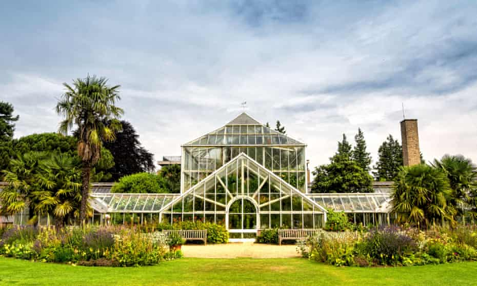 Large greenhouse at Cambridge University Botanic Garden, England, UK