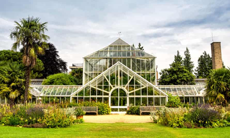 The glass house, which is home to the rare orchid, at Cambridge Botanic Garden.