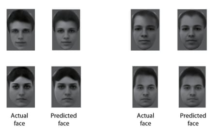 Scientists discover how the brain recognises faces – by reading monkeys' minds