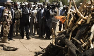 Chad's president, Idriss Déby, lights a pyre of over a thousand kilos of elephant tusks