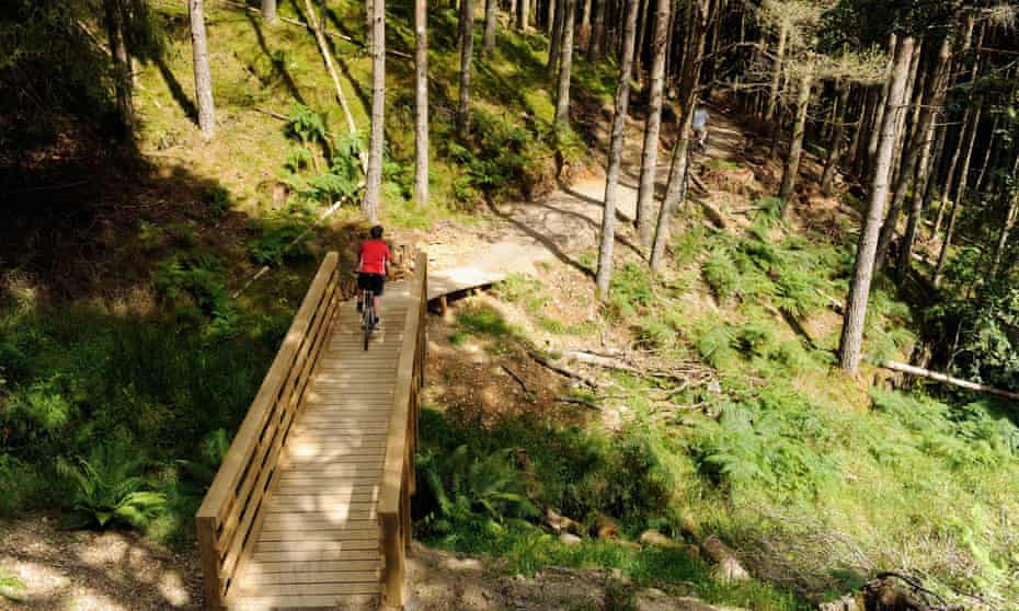 Cyclists on bridge on the Quercus mountain bike trail Whinlatter Forest