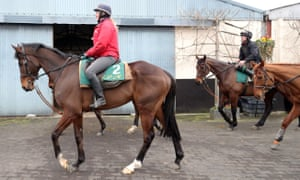 Douvan (left) is put to work at Willie Mullins' stables in Closutton.