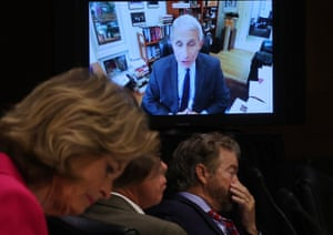 Senators listen to Dr Anthony Fauci's testimony on how to safely open the country and get America back to work and school on Tuesday.