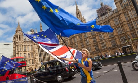 A Remain protester outside the Houses of Parliament