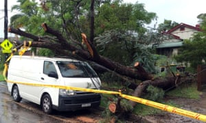 An uprooted tree fall on a parked car in the residential area of the western Sydney following an over night strong storm on April 21, 2015. Australia's biggest city Sydney and surrounding areas were lashed by wild weather with trees felled, thousands of homes without power, schools shut and huge sea swells that hampered cruise ship movements.