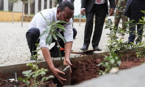 Ethiopia | World | The Guardian