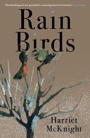 Cover image for Rain birds by Harriet McKnight