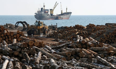 A pile of logs in the foreground and a ship on the sea behind