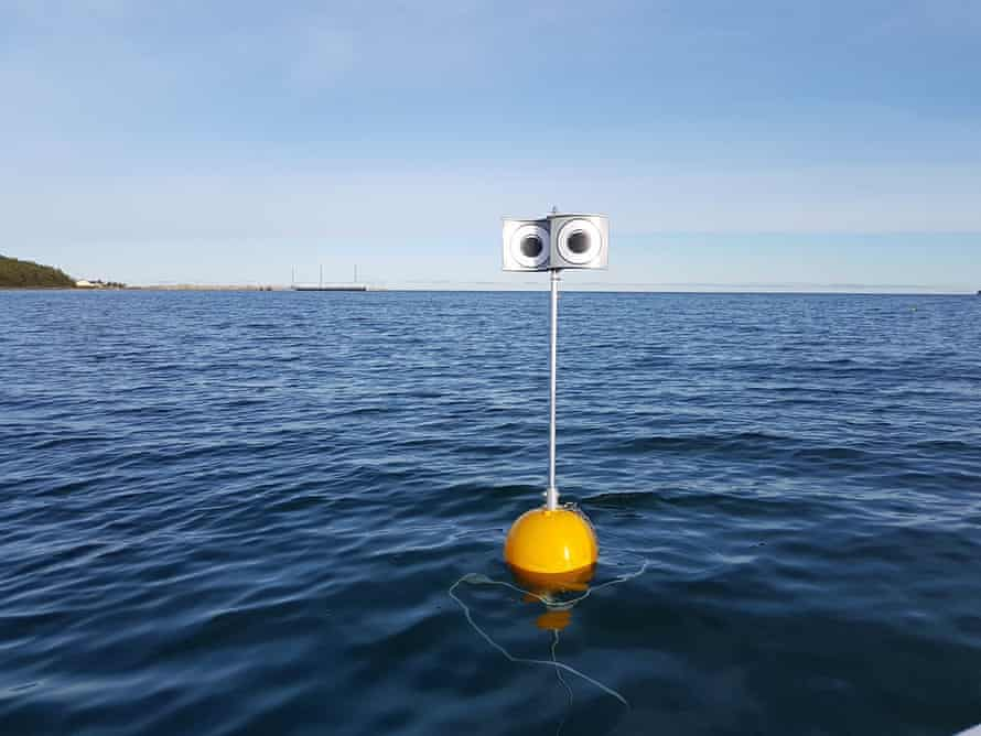 A looming-eyes buoy in the Kudema Bay, Estonia.