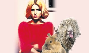 Mohair no wear … great jumper – but at what cost to the animals involved?