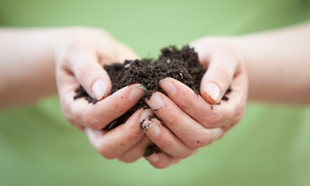 Close-up of woman's hands holding soil