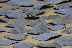 Confiscated sea turtle scutes - the large scales that make up the top of a turtle shell - in Doral, Florida. The shipment of 1,400 scutes, on its way to Asia from the Caribbean, had been painted blue and labeled as plastic recyclables in an attempt to pass undetected