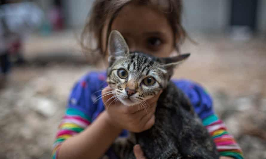 A girl in the Mauá Occupation plays with a cat