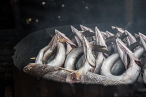Dried pipefish in Robertsport