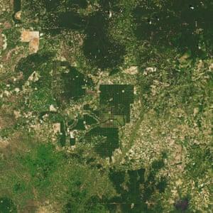 Satellite Image cambodia deforestation