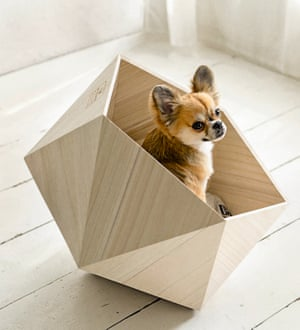 Pet house series by Natural Slow