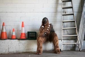 James Barry, who plays Chewbacca, takes a break backstage