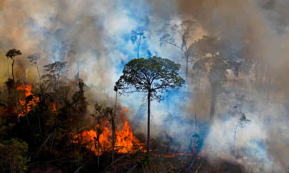 Smoke rises from an illegally lit fire in the Amazon rainforest reserve, south of Novo Progresso in Pará State, Brazil.