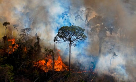 Smoke rises from an illegally lit fire in an Amazon rainforest reserve.
