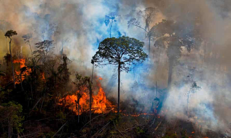 Smoke rises from an illegally lit fire in an Amazon rainforest reserve in Para State, Brazil.