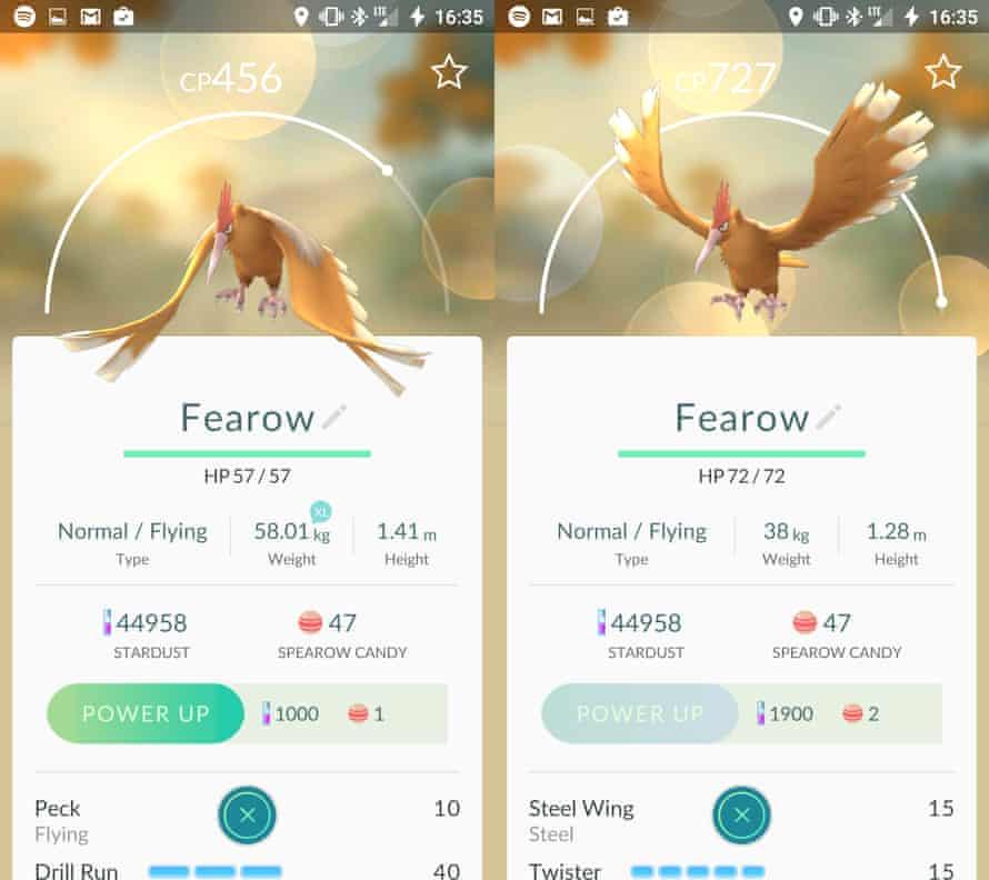 fearow pokemon