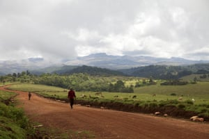 Ogiek walk along the road after harvesting honey in Mount Elgon reserve, April 2016.