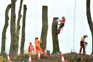 Contractors tree felling at a section of an Iron Age earthwork known as Grim's Ditch that will be destroyed by the HS2 high speed rail line.