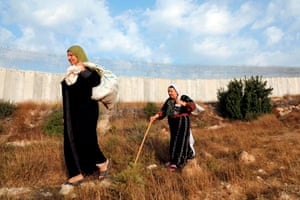 Dura, West BankPalestinian women walk along Israel's controversial West Bank separation barrier on their way to harvesting olives from their lands that currently lie across the barrier