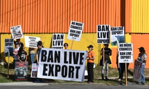 Liberal MPs and crossbench to push for live export ban after