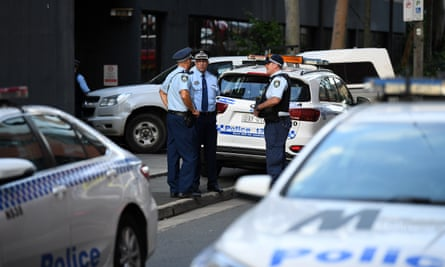 Police on the scene of the baboon escape in Sydney on Tuesday.