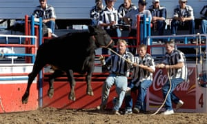 Inmates struggle to control a bull at a rodeo at Angola state penitentiary in Louisiana.