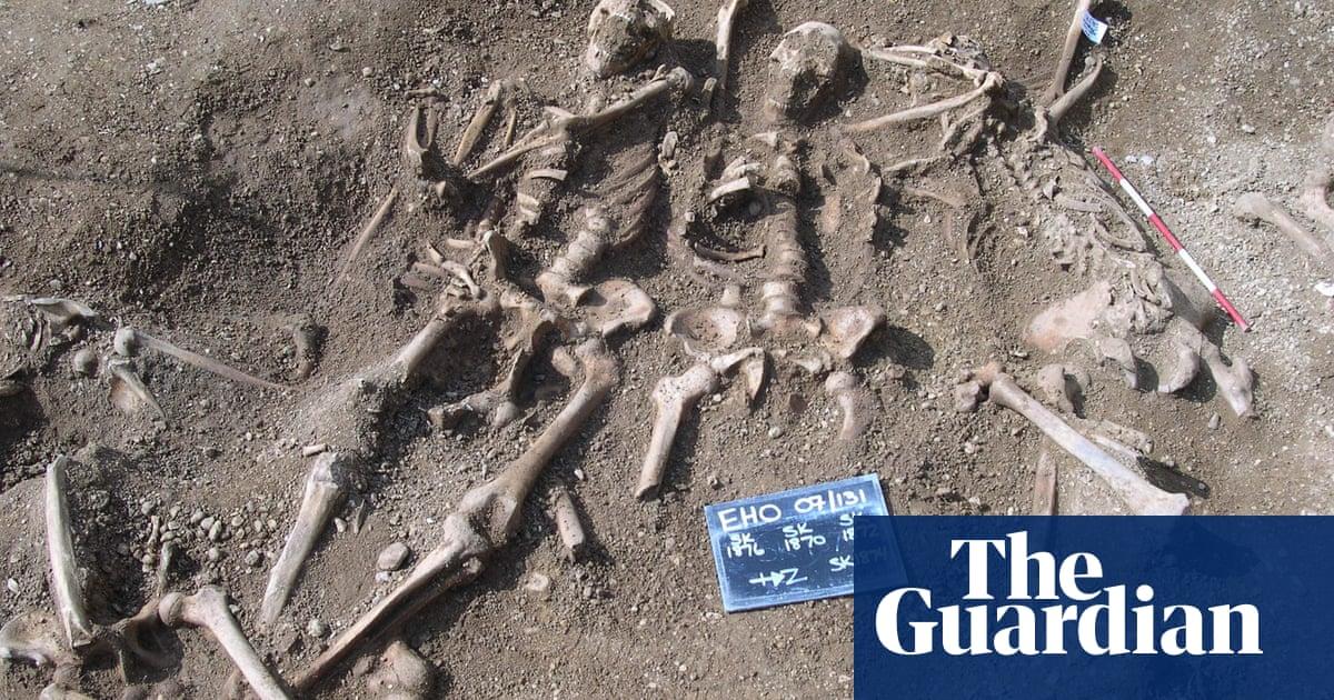 Skeletons of Viking men to be reunited in Danish exhibition