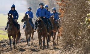 Horses from the Colin Tizzard yard make their way back from the gallops on Monday.