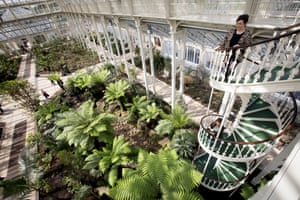 The Temperate House is home to some of the world's rarest and most threatened plants