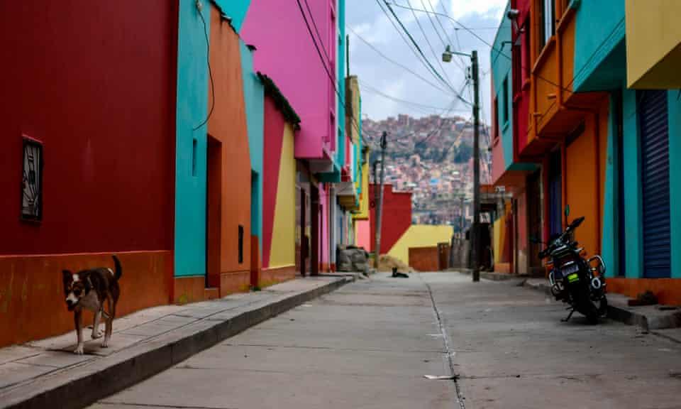 A dog walks in a empty street in the Chualluma neighbourhood, La Paz, Bolivia.