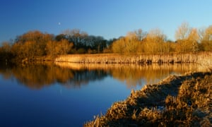 Denaby Ings nature reserve near the old colliery, Conisbrough, South Yorkshire.