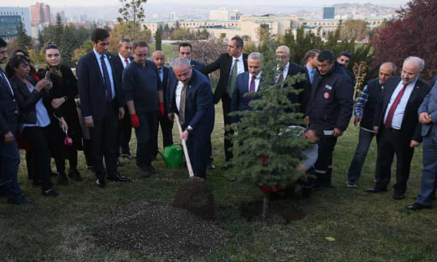 The Speaker of Turkey's parliament, Mustafa Şentop, planting a tree in Ankara on 11 November 2019 as part of National Forestation Day.