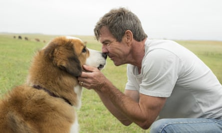 Dennis Quaid with a dog in A Dog's Purpose.