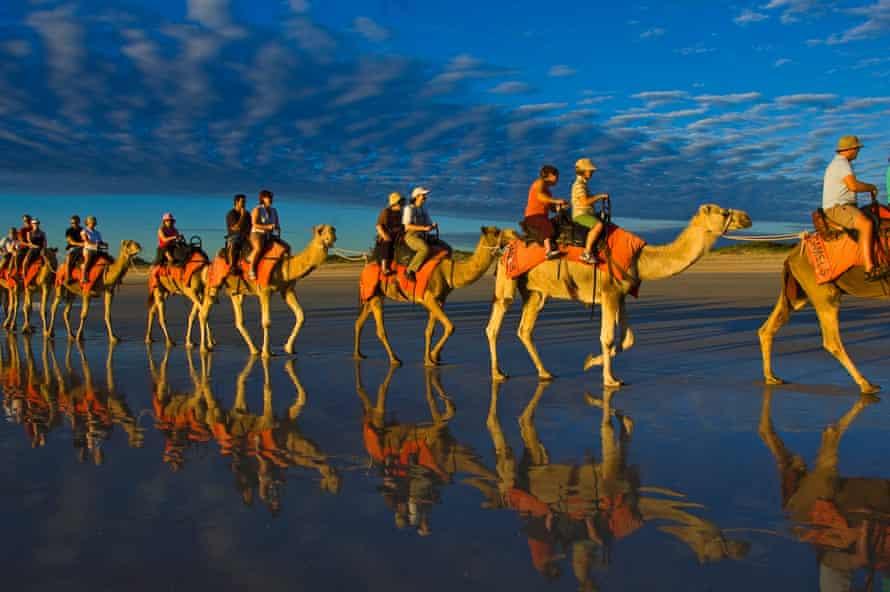A camel caravan on Cable beach in Broome, Western Australia