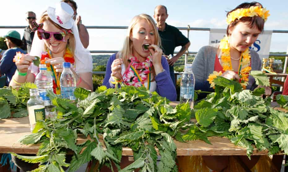 Annual Nettle Eating World Championships