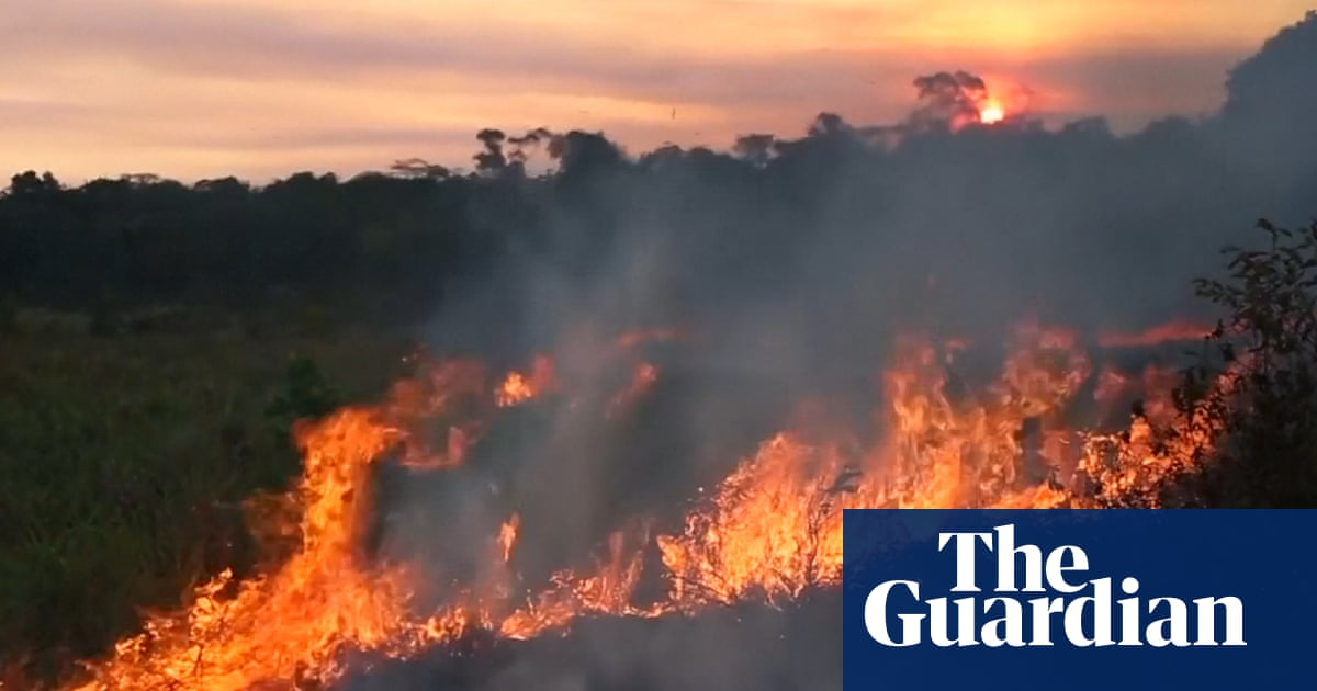 Amazon rainforest fires: Macron calls for 'international crisis' to lead G7 discussions
