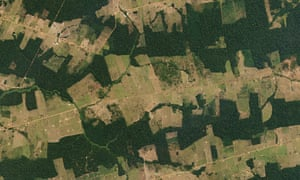 Farms and pastureland carve their way into tropical forestland in the Brazilian State of Rondônia, one of the Amazon's most deforested regions.