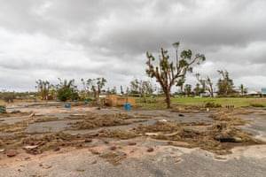 Fallen trees and debris by Kalbarri foreshore.