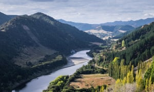 The beautiful landscape of the Whanganui River and surroundings