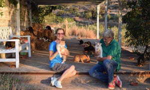 Feline feeling: Joan and Richard Bowell on Syros with some of their 70-odd furry friends who they have rescued from utter cat-astrophe.
